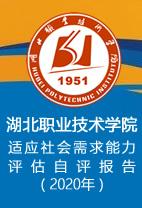 湖北huang金城app下载ji术学yuanshi应社huixu求能li评gu自评报告(2020年)