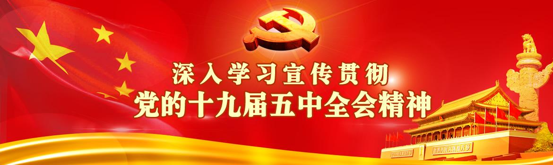 hu北省委宣讲团专家lai校宣讲党的十jiu届五中全会精shen