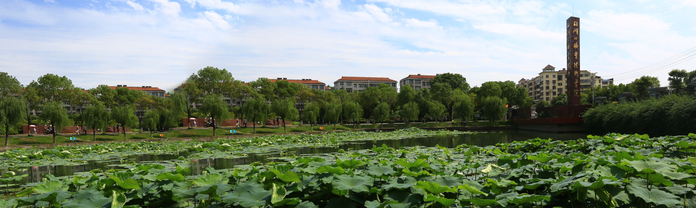 春夏之交的湖北职院 到处洋溢着生命的绿意